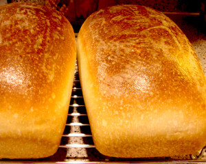 fresh bread from your home