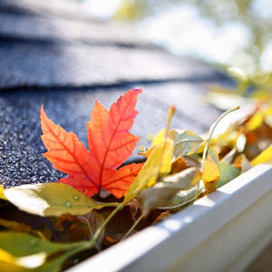 Winterizing Your DC Area Home