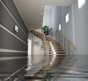 What To Do When Your House Floods